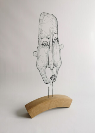 Long face side view - art by Fiona Morley