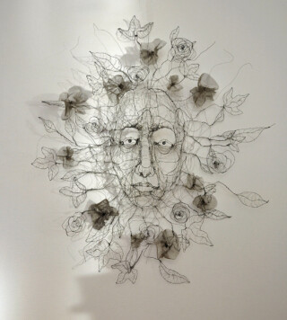 Fiona Morley The beginnings of dreams wire and wire mesh, face with flowers and leaves growing out